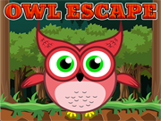 Owl Escape