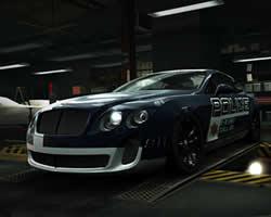 Bentley Police Puzzle
